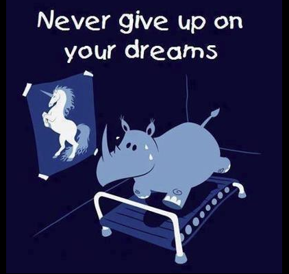 unicorn_nevergiveup