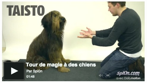 chien_tour_magie_video