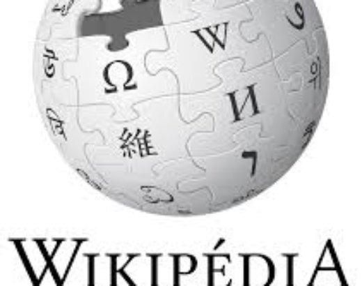 J'ai enfin ma page dans Wikipédia