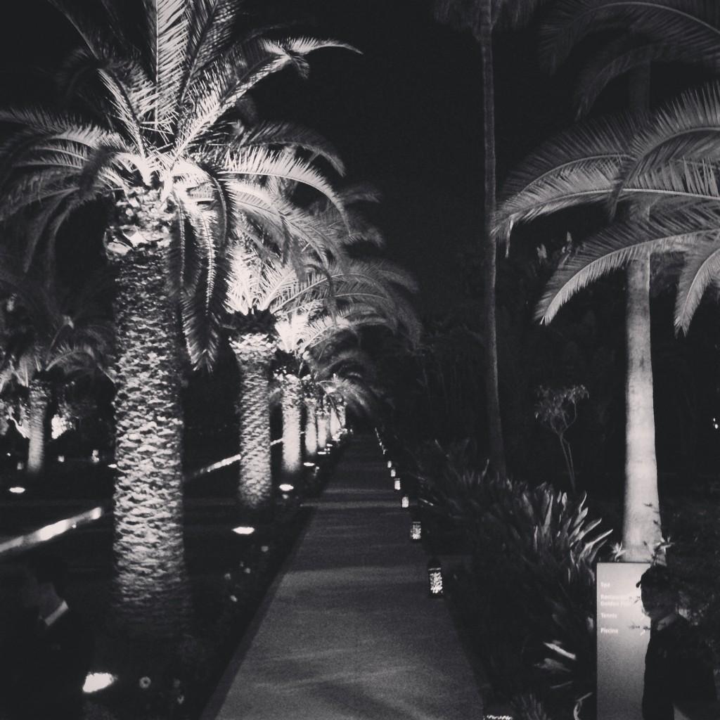 Thecelinette_Mawazine2015_2