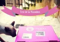 thecelinette_miaoubox_0