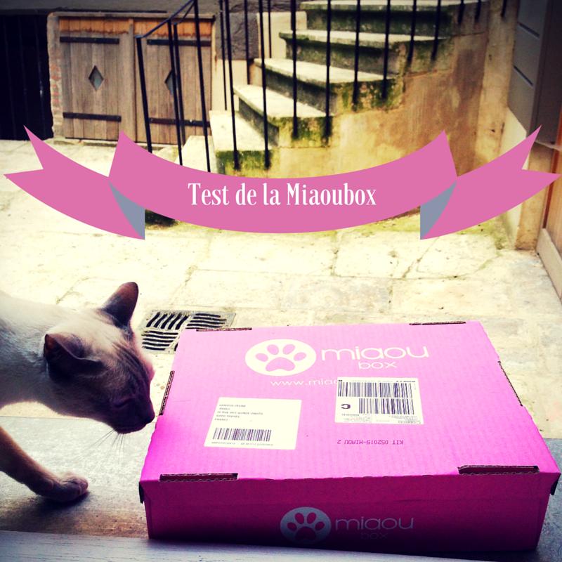 Mon chat a testé la Miaoubox