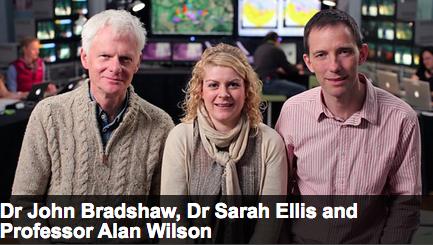 BBC_cat_2013_Sage