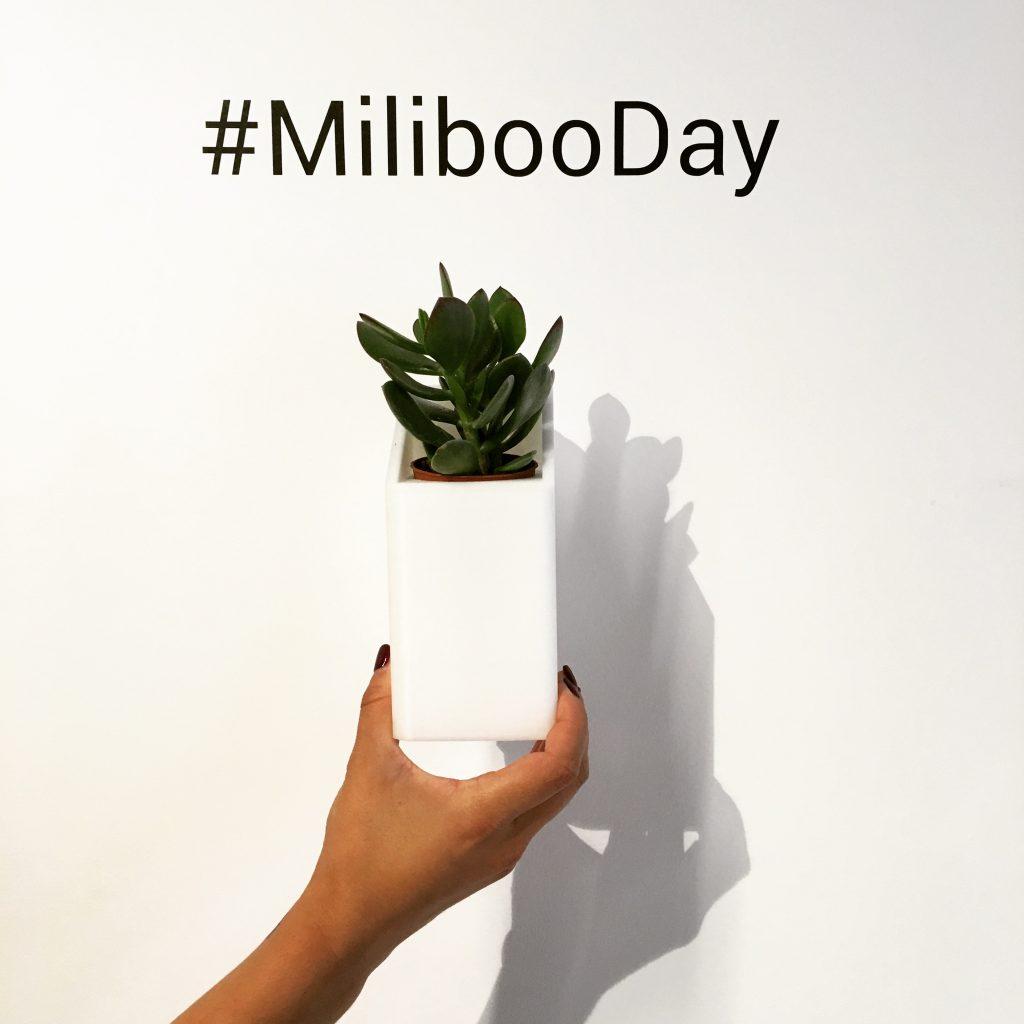 Miliboo_2016_1