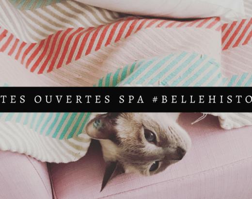 Portes ouvertes SPA : avec votre animal, quelle est votre belle histoire ?