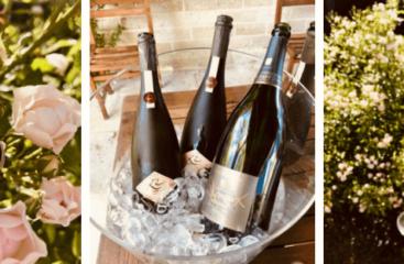 Arts-sur-Seine : pic-nique bucolique au manoir du Champagne Devaux